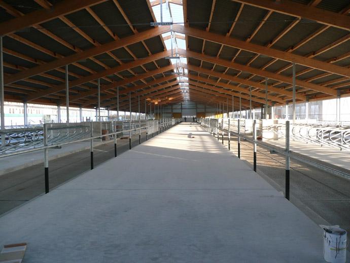 MVA Selbitz: Neubau Jungrinderstall